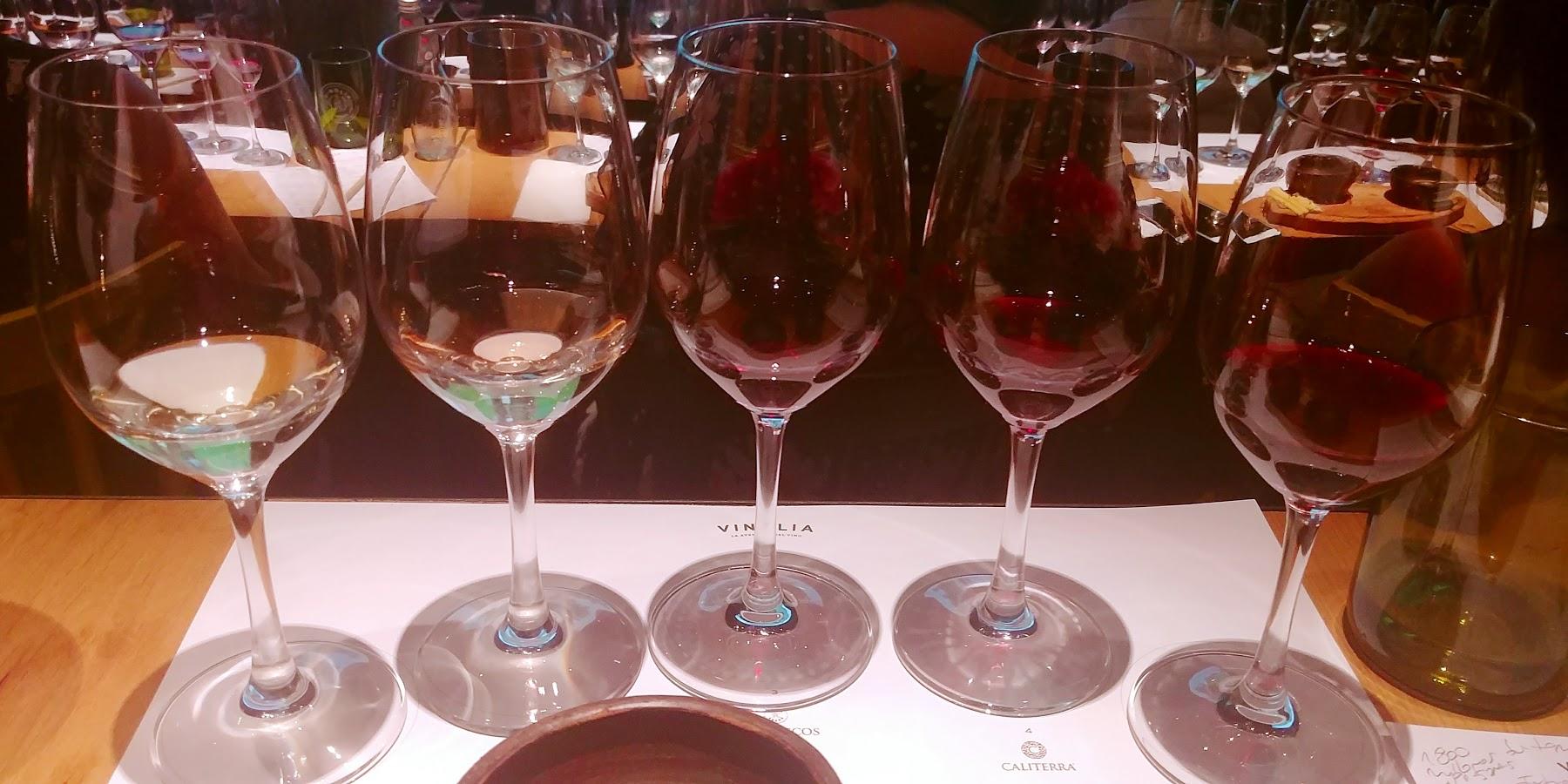 Recorre los valles del vino con el nuevo tour virtual de BigBox.