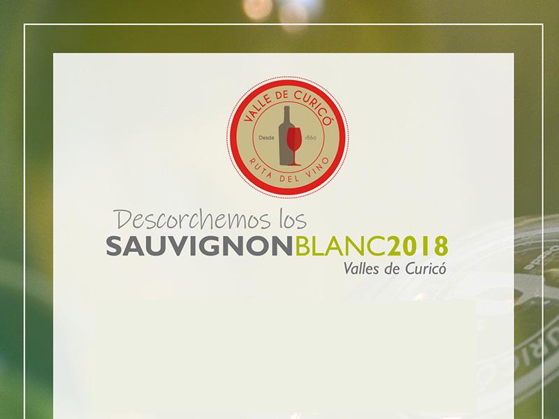 Sauvignon Blanc y Curicó: Una relación estable