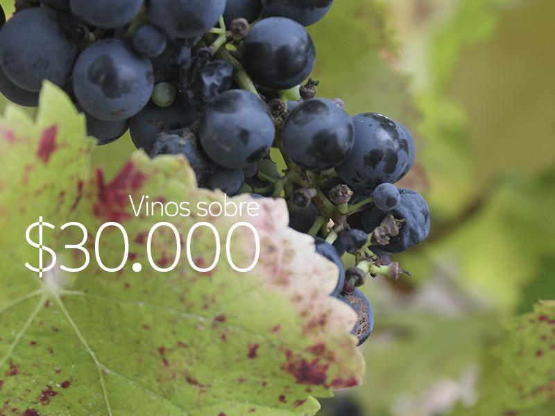 #VinosReC – Vinos sobre $30.000