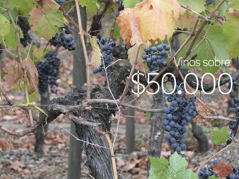 #VinosReC – Vinos sobre $50.000