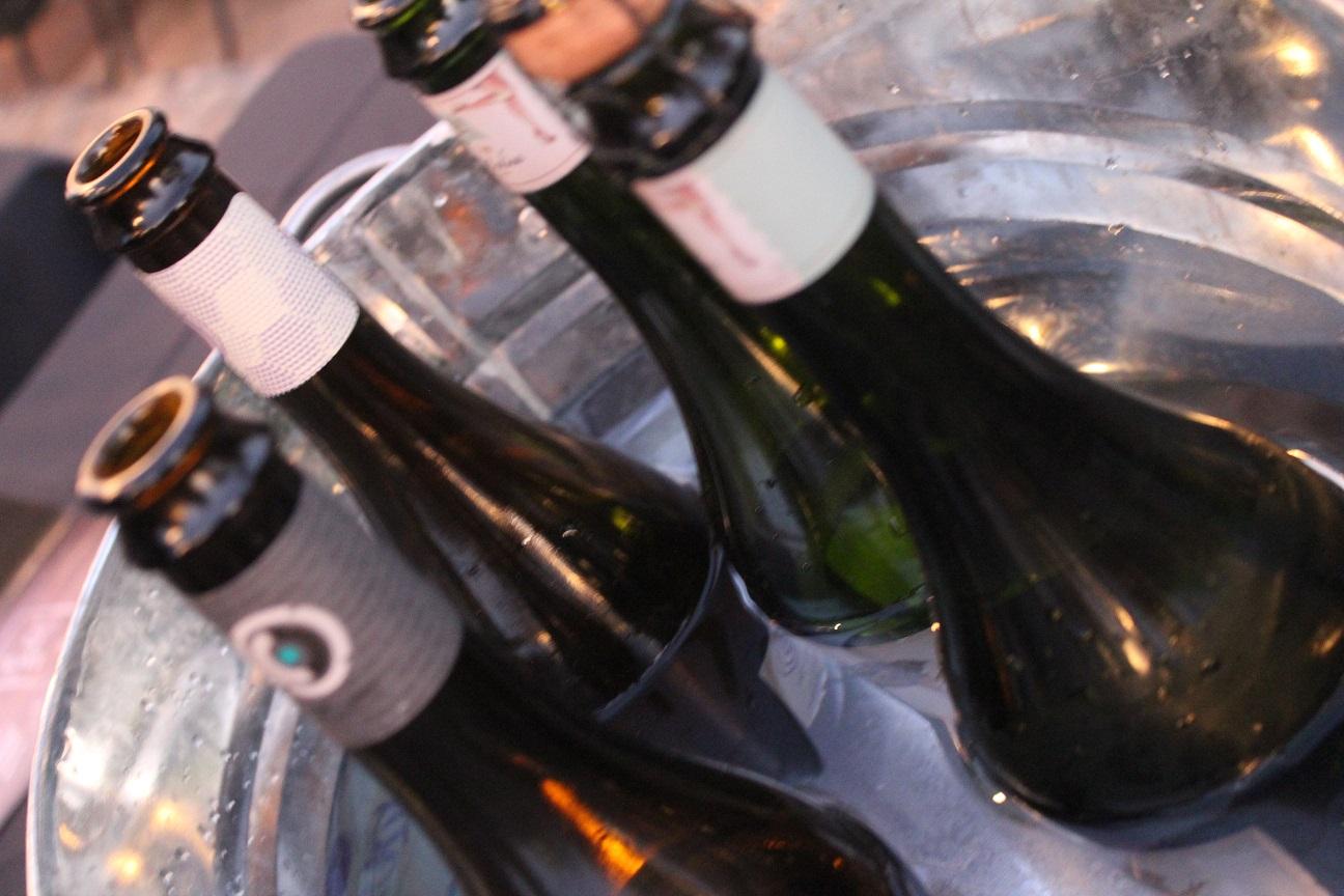 Panoramas para celebrar el día del vino