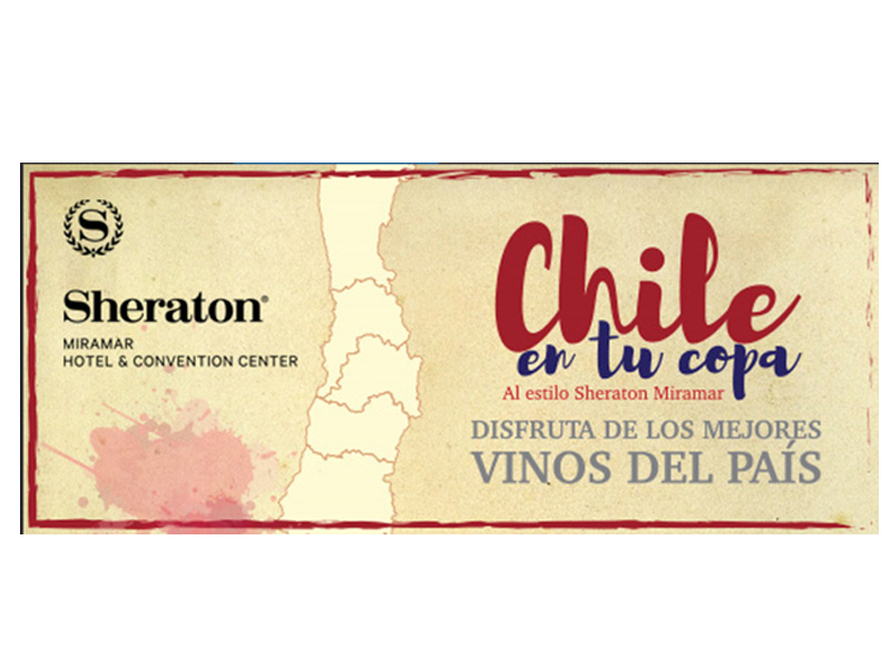 Este jueves 7 de febrero se realizará una nueva edición de Chile en tu copa