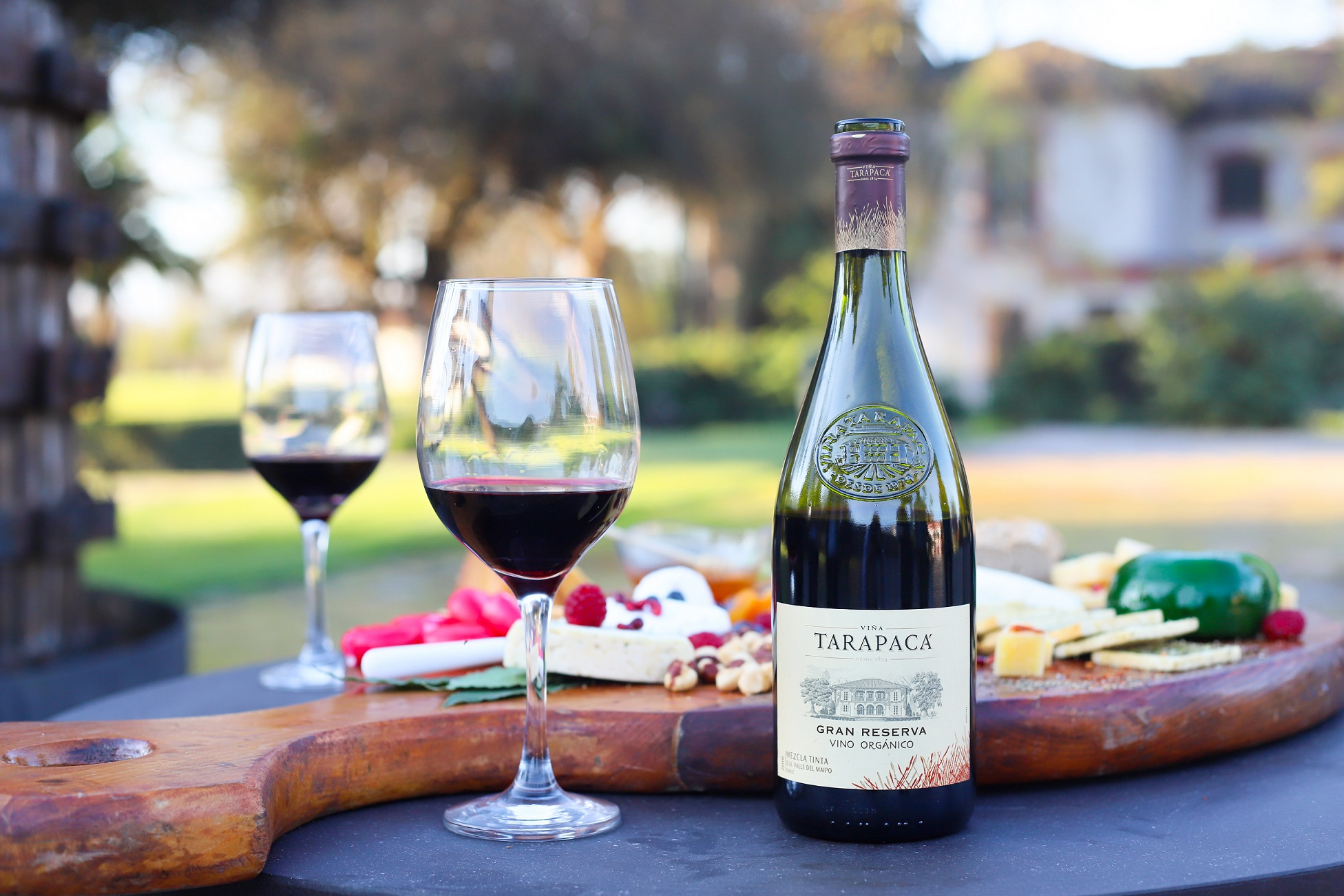 Tarapacá Gran Reserva Orgánico, el vino que rescata los procesos ancestrales de producción.