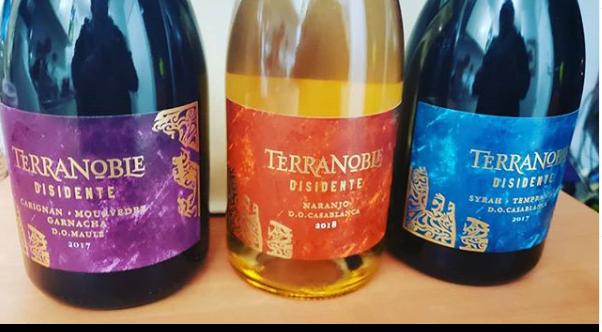 Disidente, la nueva linea de vinos de Viña Terranoble