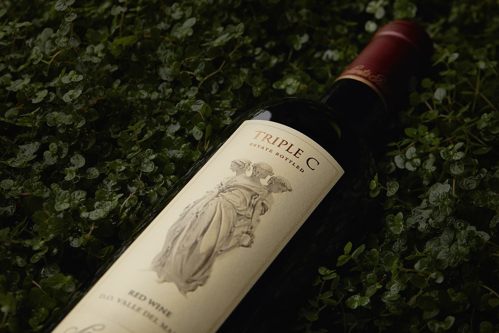 Triple C fue premiado en Wine Enthusiast.
