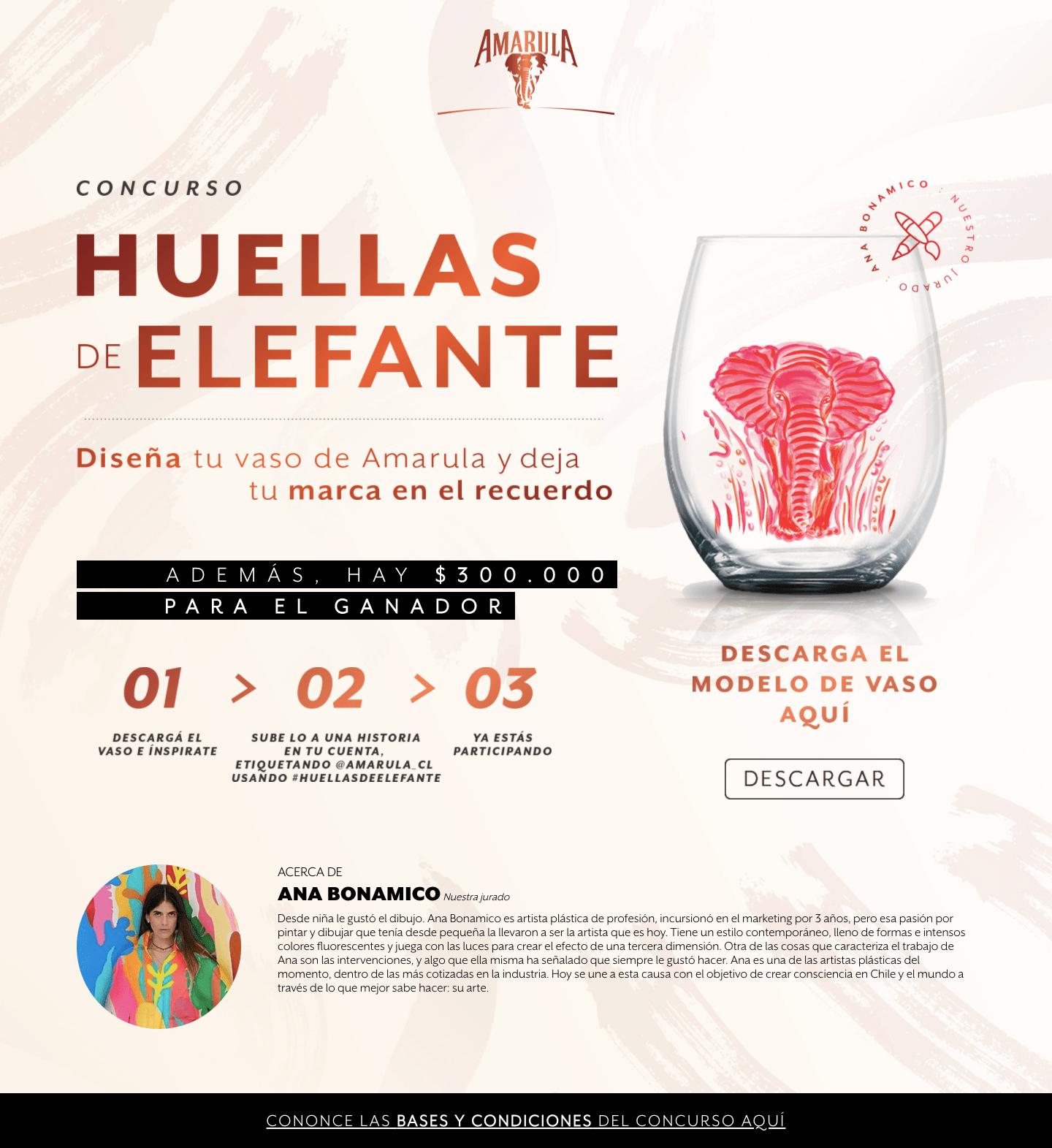Día del Elefante: Amarula celebra lanzando concurso que busca el diseño de su kit conmemorativo