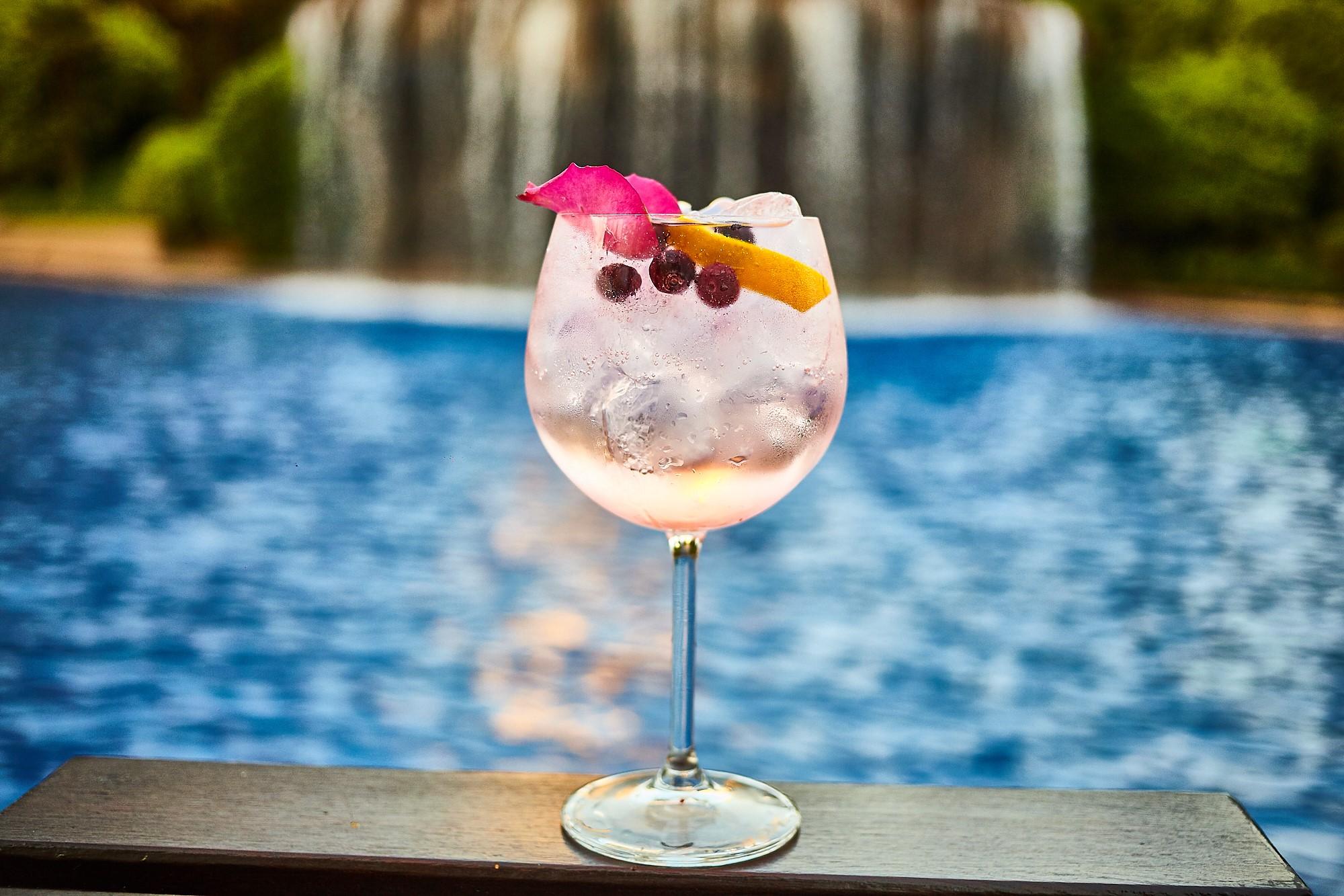Gin Tonic: 4 alternativas para la barra