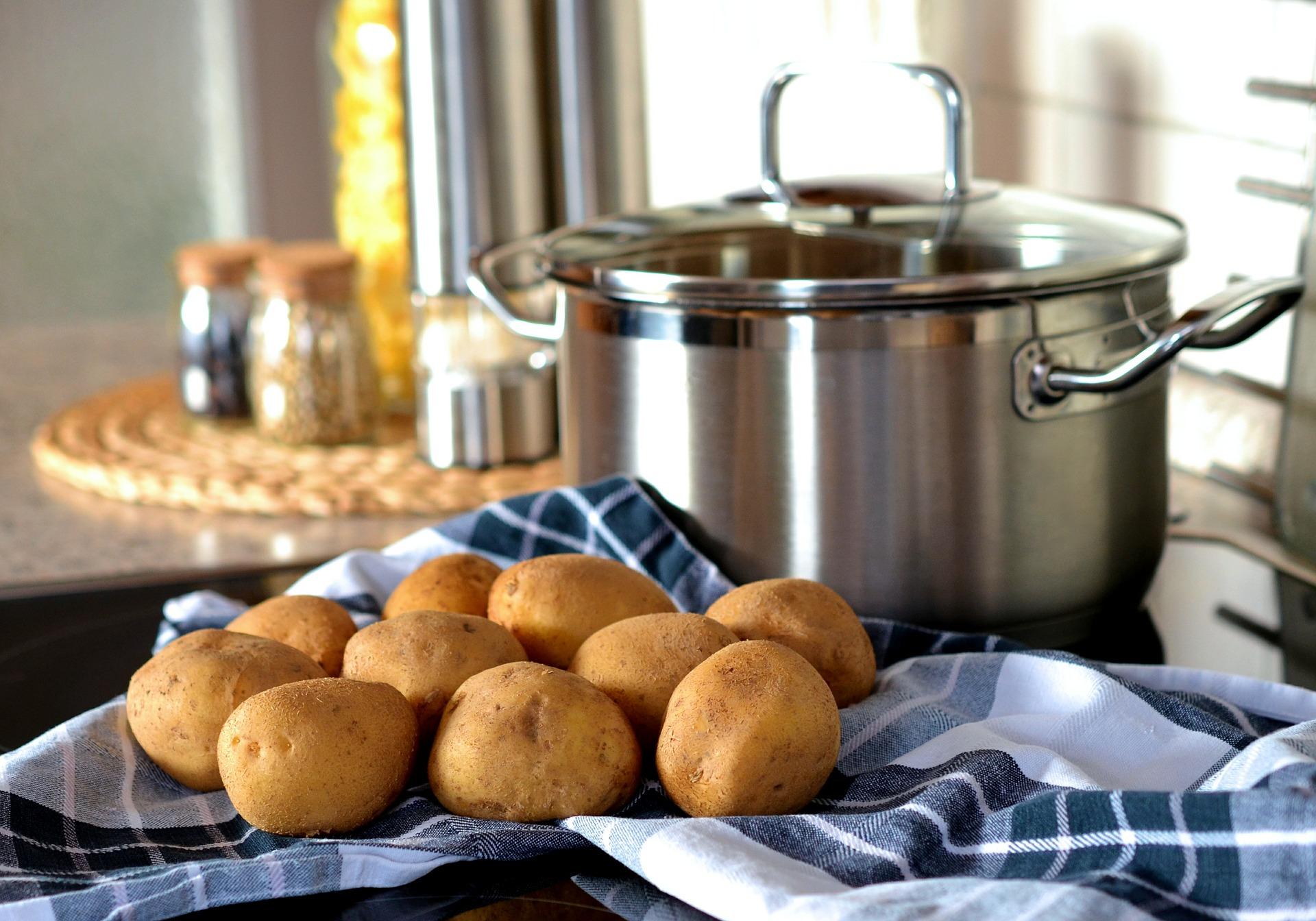 Día de la Comida Chilena, celebra preparando los mejores platos nacionales