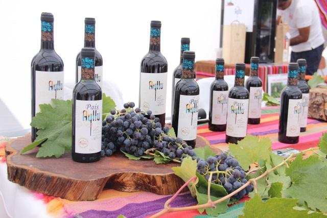 Cooperativa de vinos Lickanantay celebrará la vendimia