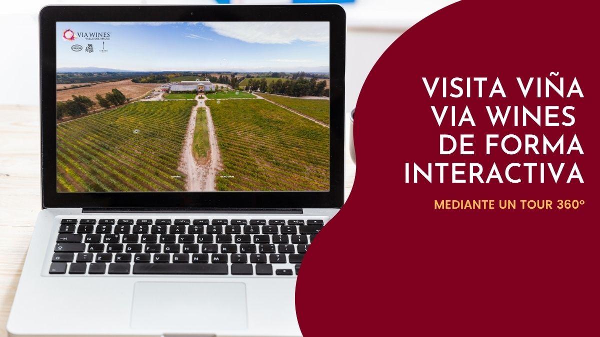 Visita Viña VIA Wines de forma interactiva